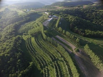 view of Huch orchard from the air
