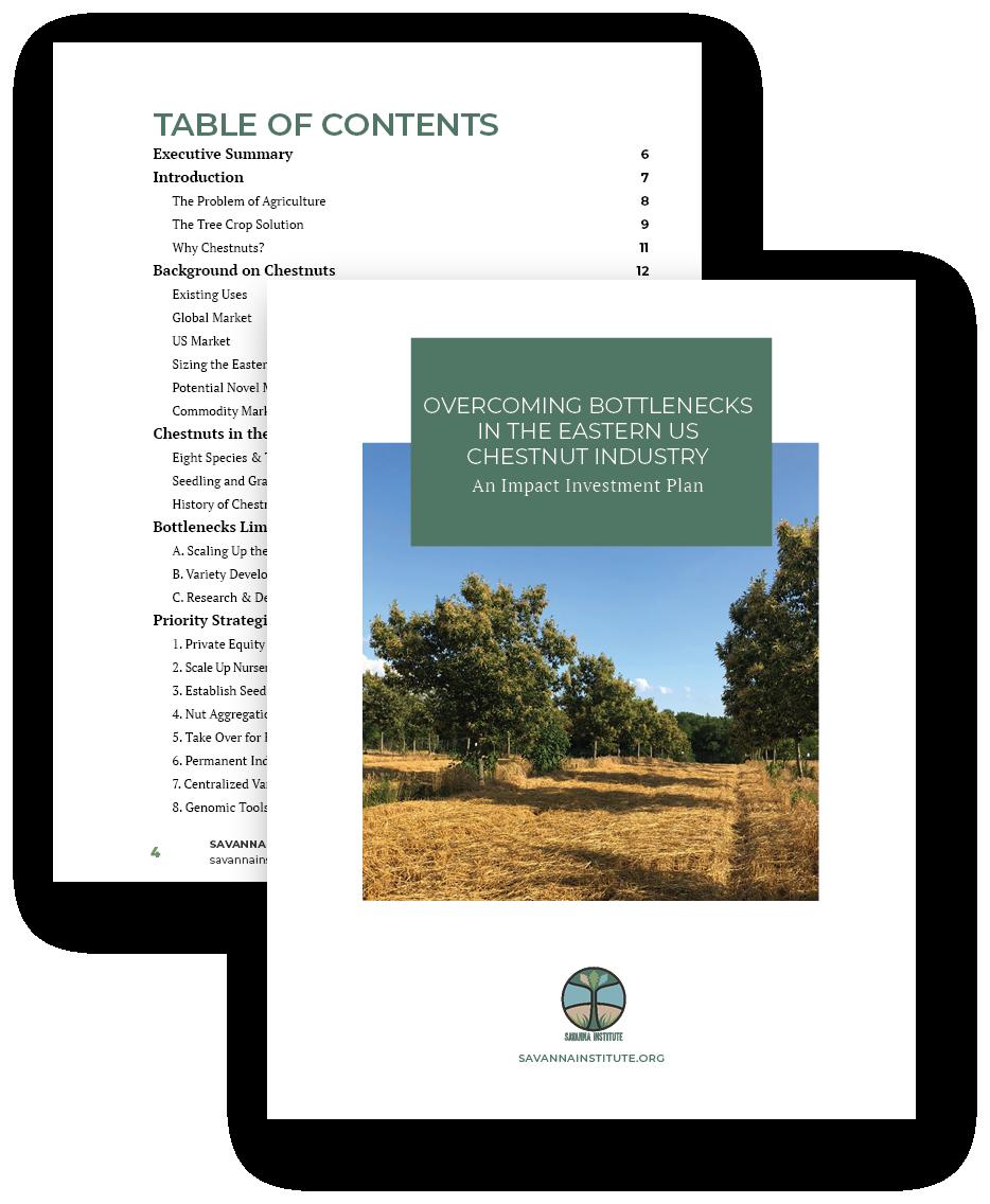 cover of hazelnut IIP report